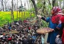 Burhan Wani lives in the hearts and minds of Kashmiri youth: AJK President